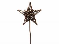 Stern mit Stiel